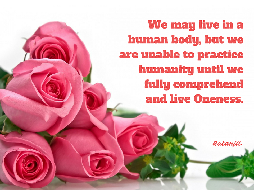 """We may live in a human body,