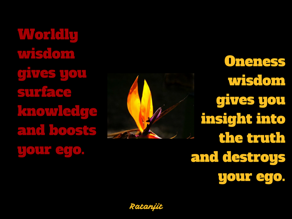 """Worldly wisdom gives you