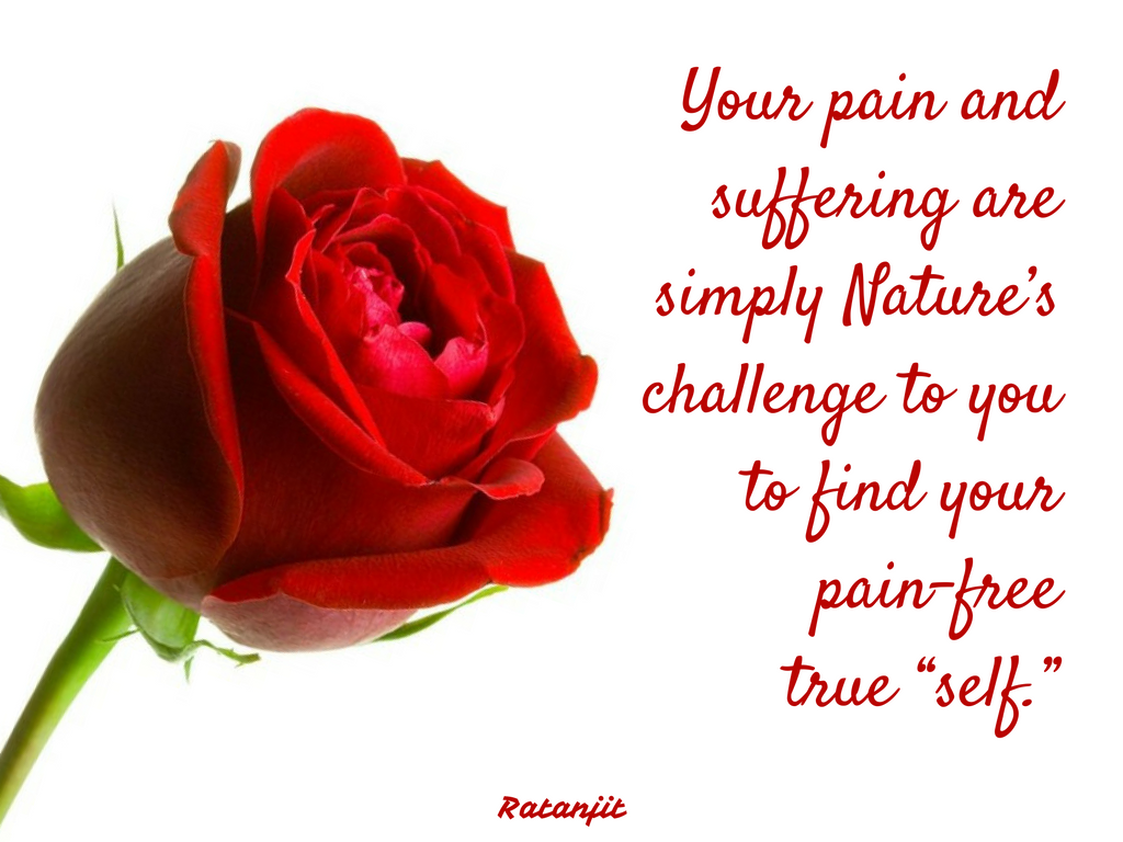 """Your pain and suffering are